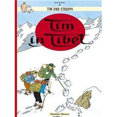 Figurine Dogmatix