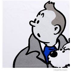 Comic book Tintin Vol 01: Tim im Kongo