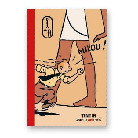 Figur Marsupilami Glücklich (Plastoy 65020)