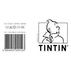 Elite Collection Figur Star Wars Luke Skywalker Snowspeeder 1/10 (Attakus SW050)
