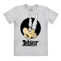 Asterix Magnet: Obelix sleeping