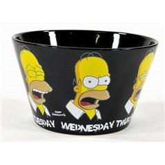 Wasserflugzeug F.E.R.S, 8 cm